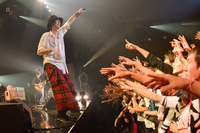 "RADWIMPS、感極まる。ハナレグミと寄り添った""胎盤""第六夜レポ! - all pics by 古溪一道"