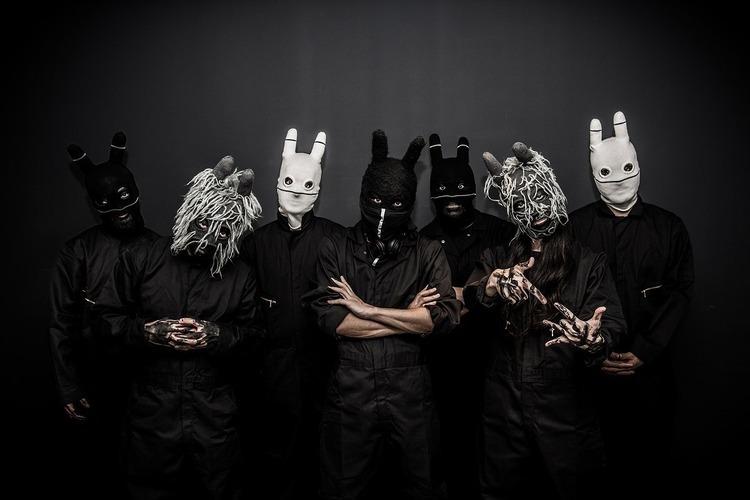 謎多きウサギの覆面バンド、続報...