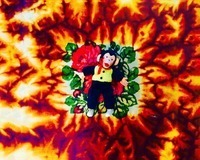Hodgy、デビュー・ソロ・アルバム『Fireplace: TheNotTheOtherSide』リリース決定。収録の「Baebell」公開