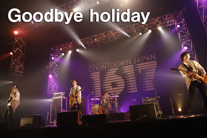Goodbye holiday