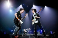 UNISON SQUARE GARDEN/横浜アリーナ - All photo by Viola Kam (V'z Twinkle)