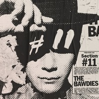 THE BAWDIES Section #11