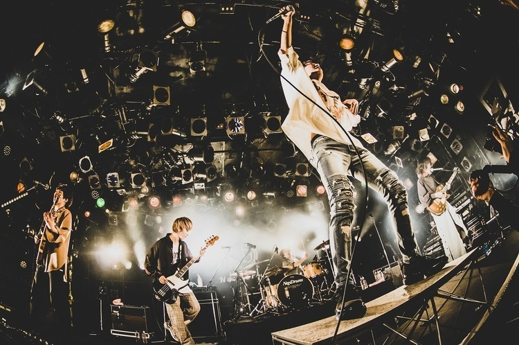 Novelbright/渋谷CLUB QUATTRO - All photo by 堀内れい子