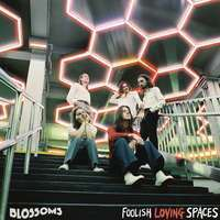 ブロッサムズ FOOLISH LOVING SPACES